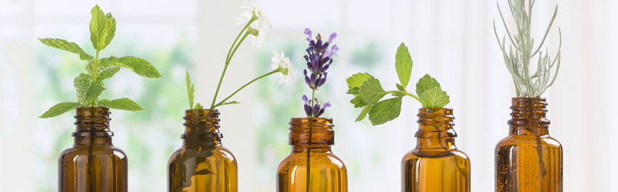 OILS: ESSENTIAL CARE FOR YOUR SKIN